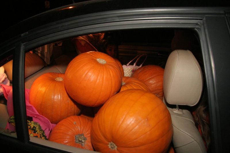 Pumpkincar3